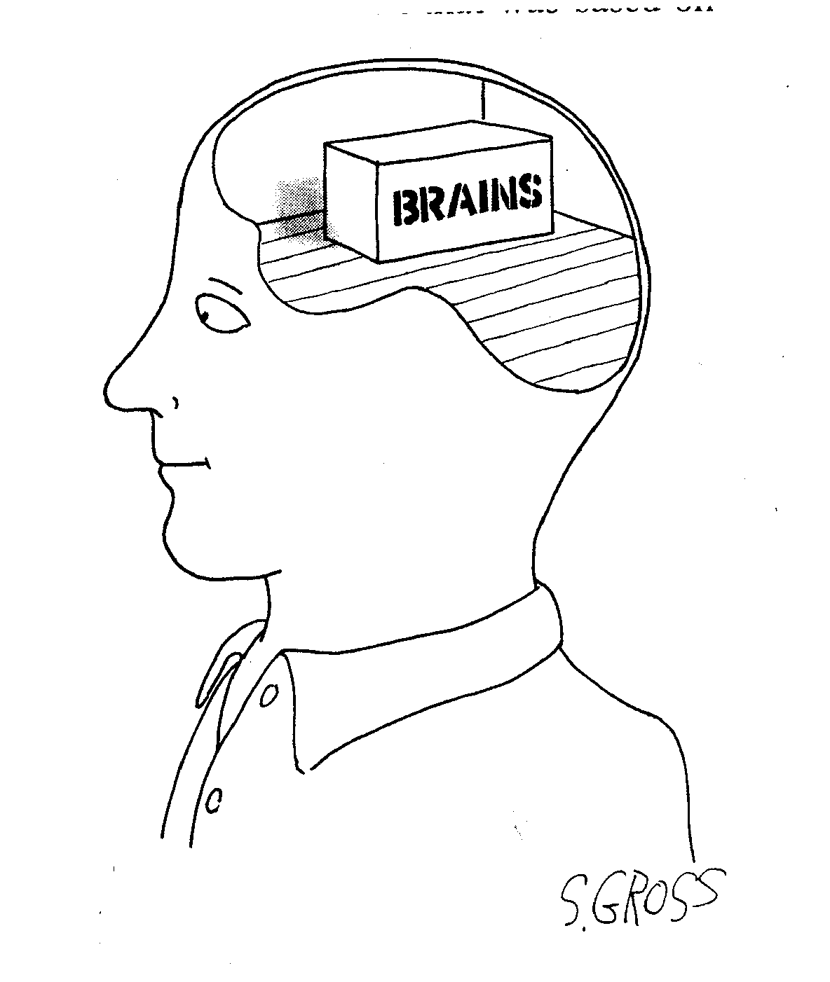 phrenology essay Brief history of psychology from r eric landrum,  phrenology assumed, however, that the skull was an accurate representation of the underlying brain, that the.