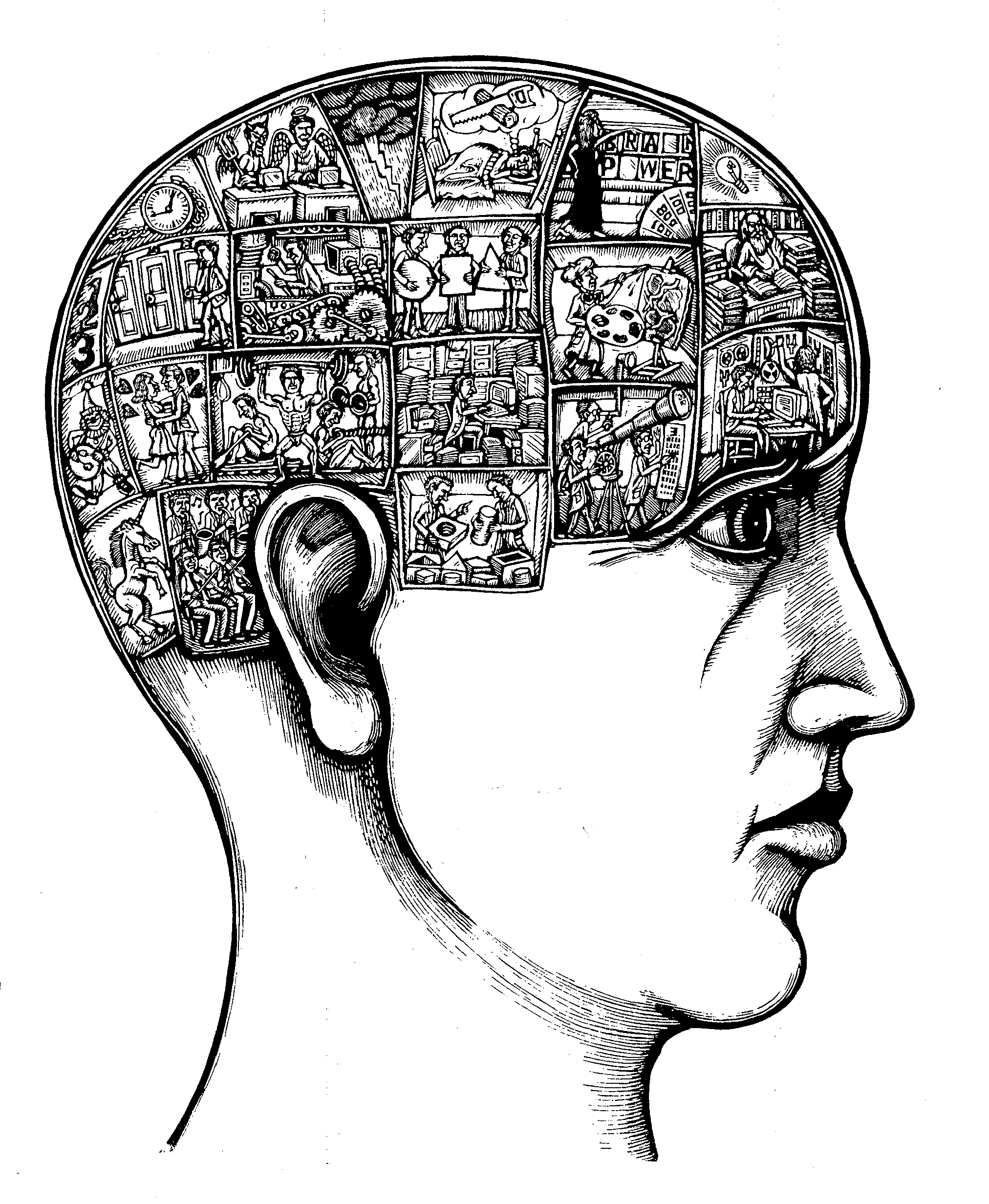 an introduction to phrenology Our goal in this chapter is to provide an introduction to the growing field of sense, modern neuroimaging is similar to the 18th century practice of phrenology introduction to functional neuroimaging.